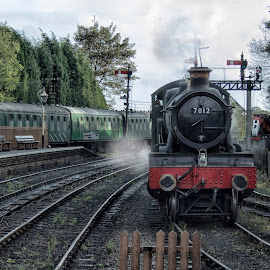 Erlestoke Manor Steams in by Dez Green - Transportation Trains ( railway, vintage, steam train, trains, steam )