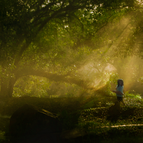 Classic Asian by Ardy Adriana - Landscapes Forests ( mystic, ray of light, forest, malaysia, women, asian, borneo )