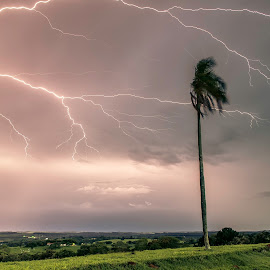 ... by Matheus Dalmazzo - News & Events Weather & Storms ( itapetininga, cinestudio, coconut, tree, lightining, storm )