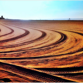 Tractor Lines by Denny Paul - Abstract Patterns ( sand, color, lines, ny, tractor )