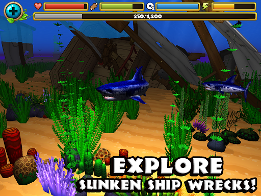 Wildlife Simulator: Shark - screenshot