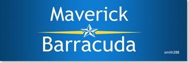 MaverickBaracudaSmall