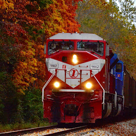Fall Train by Suzanne West - Transportation Trains