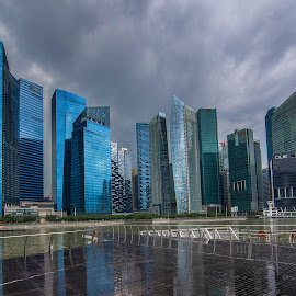 Singapore Skyline by Wim Swyzen - City,  Street & Park  Skylines ( skyline, colors, standard chartered building, financial center, dbs tower, light, singapore )