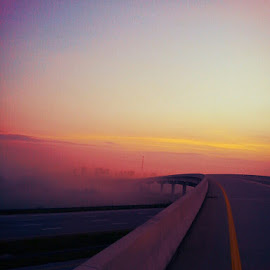 Morning Mist by April Lewis - Transportation Roads ( highway, fog, bridge, sunrise, mist )