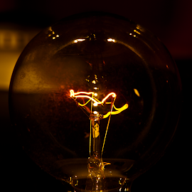 Dim Idea by Leonard Rivera - Artistic Objects Glass ( clear, dim, idea, glass, hot, light bulb )