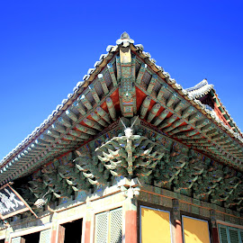 Bulguksa Temples Great Angle by Matt Dittsworth - Buildings & Architecture Other Exteriors ( bulguksa, buddhism, red, blue, worship, buddha, angle )