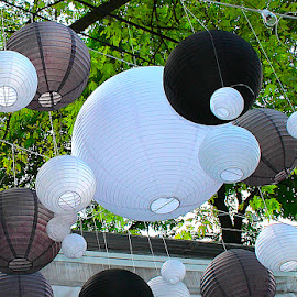 Lanterns by Ronnie Caplan - City,  Street & Park  Markets & Shops ( roof, building, green, paper, trunks, white, trees, leaves, lanterns, branches, suspended, black )