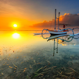 Morning Sunshine by Gede Suyoga - Landscapes Waterscapes