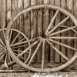 Wheels by Jun Sigue - Artistic Objects Other Objects ( device, land, transportation,  )
