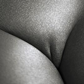 Delta by Maxim Malevich - Nudes & Boudoir Artistic Nude ( erotic, body, art nude, pubis, body parts, nude, female, black and white, woman, naked, artistic nude, skin )