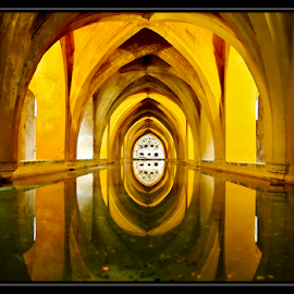 Wishing Well by Stephane Varin - Buildings & Architecture Other Interior ( water, mirror, reflection, real alcazar, sevilla, wishing well, spain )