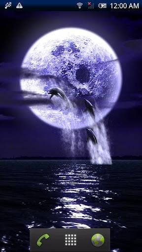 Dolphin★Fullmoon