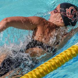 500 Free by Matt Folsom - Sports & Fitness Swimming