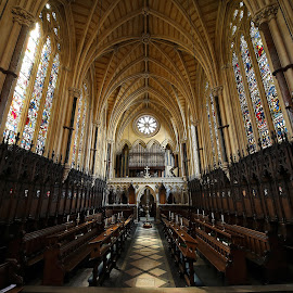 Exeter College Chapel, Oxford UK by Almas Bavcic - Buildings & Architecture Other Interior