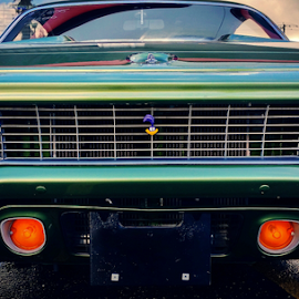 Roadrunner by Todd Reynolds - Transportation Automobiles ( classic car, green, plymouth, roadrunner, classic )