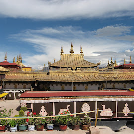 View from the roof of the Jokhang Temple Lhasa by David Warner - Buildings & Architecture Places of Worship