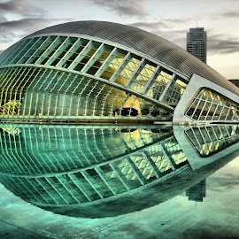 Hemispherical by Dark Reid - Buildings & Architecture Public & Historical ( dawn, reflections, valencia, hemisfèric, morning, science park, spain, city )