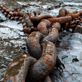 Chained by David Legg - Artistic Objects Industrial Objects ( industrial, chains, boscastle, coast )
