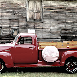 Timeless by Daloma Poe - Transportation Automobiles ( chevy truck, red, barn, faded, classic )