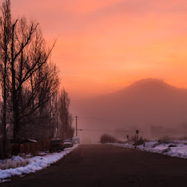 Misty Morning by Tracey Dolan - Landscapes Sunsets & Sunrises