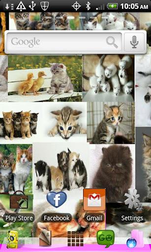 Go Launcher Kittens