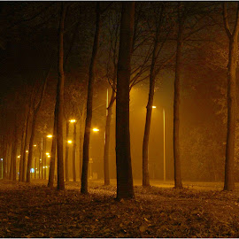 November mist. by Fred Starkey - City,  Street & Park  Street Scenes (  )