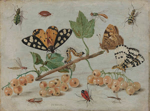 RIJKS: Jan van Kessel (I): Insects and Fruit 1665