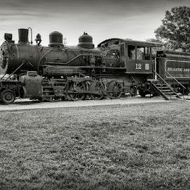 by Walter Farnham - Transportation Trains (  )