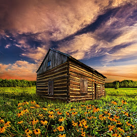 Off the Grid by Phil Koch - Buildings & Architecture Public & Historical ( vertical, photograph, fine art, yellow, travel, leaves, love, sky, nature, tree, autumn, bluesky, light, flower, orange, twilight, agriculture, horizon, log, portrait, dawn, backlight, serene, outdoors, trees, floral, natural light, cabin, wisconsin, ray, landscape, phil koch, sun, photography, cottage, path, horizons, office, clouds, park, green, scenic, morning, shadows, wild flowers, field, red, color, blue, sunset, peace, fall, meadow, beam, sunrise, landscapes, hike, mist )
