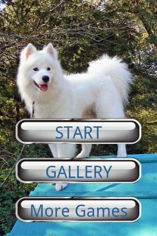 狗狗拼圖:薩摩耶