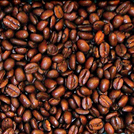 Coffee Beans from Ethiopia and Kenya by Cheryl Beaudoin - Food & Drink Alcohol & Drinks ( beans, coffee, safari, kenya, africa, ethiopia, Africa, Safari,  )