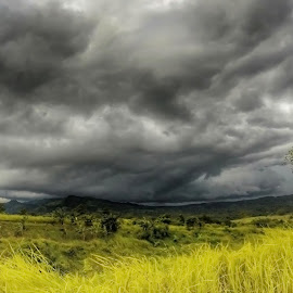 take shelter by Paul Anthony Bulao - Landscapes Weather ( field, clouds, lightning, grass, weather,  )