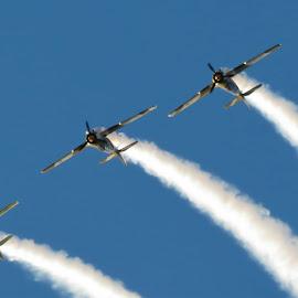 Air Bandits by Matei Iulian - Transportation Airplanes (  )