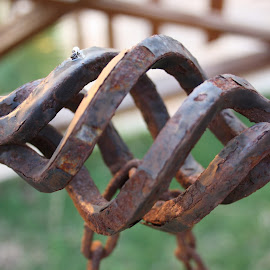 rusty handle  by Noele Hachach - Artistic Objects Antiques