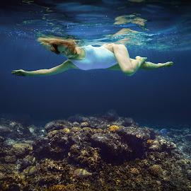 Dream. by Dmitry Laudin - People Portraits of Women ( water, corals, underwater, swimsuit, woman, fish, swim, ocean, tropics )