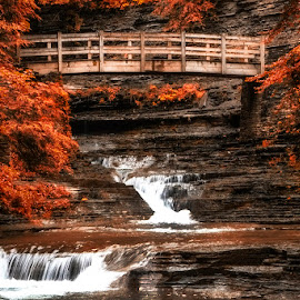 Bridge over Falls by Fred Herring - Landscapes Travel