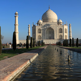 4 minars of Taj by Srivenkata Subramanian - Buildings & Architecture Public & Historical ( love, taj mahal, agra, wonder of the world, india, beauty, white marble,  )