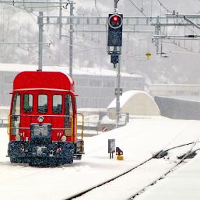 Winter by Michael Schwartz - Transportation Trains (  )
