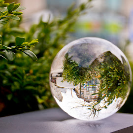 Seen the world through a sphere by Linda Brueckmann - Artistic Objects Glass (  )