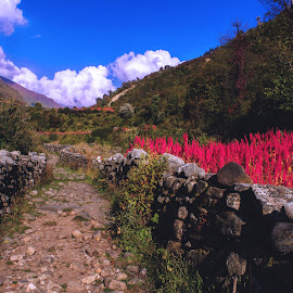 Har ki Dun, India by Debayan Messi - Landscapes Travel ( india )