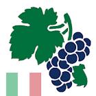 Weinquiz Italien icon