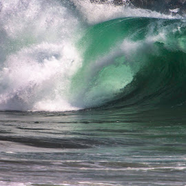 Big Surf Left Coast by Patrick Flood - Landscapes Beaches ( canon, photosbyflood, tube, california, large surf, hurricane marie, wave, newport beach, west coast, the wedge )