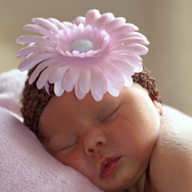 Baby Ava 3 days old by Missy Moss - Babies & Children Babies ( baby ava )