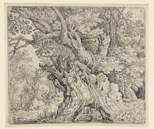 RIJKS: Roelant Savery: Gnarled Trees near the Water 1639