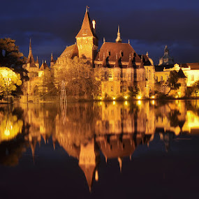Una fiaba nel parco - Budapest by Luigi Alloni - Buildings & Architecture Public & Historical ( budapest night reflections castle lake park )