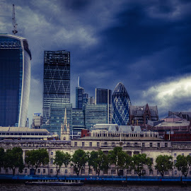 London from the Thames by Neil Duffen - City,  Street & Park  Skylines