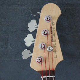 Bass Guitar by Chris KIELY - Artistic Objects Musical Instruments
