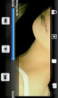 Screenshot of FLV Video & Audio Player