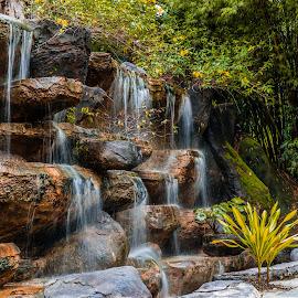 Fountain at local park by Varok Saurfang - City,  Street & Park  Fountains ( man-made fountain, park, botanical garden, taman botani, taman, kuala lumpur )